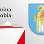 Wybory Krobia
